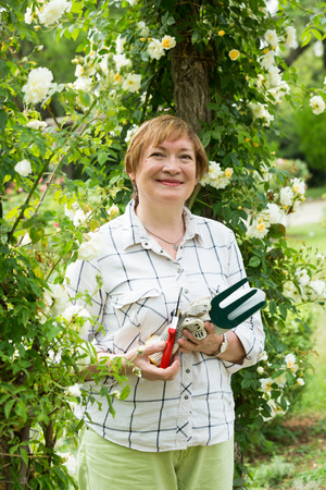 horticultural: smiling senior woman gardener holding horticultural tools in garden on sunny day