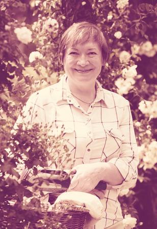 horticultural: glad mature woman gardener having horticultural instruments in basket on summer day