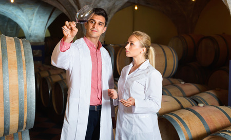 ageing process: Diligent specialists in white robes checking ageing process of wine