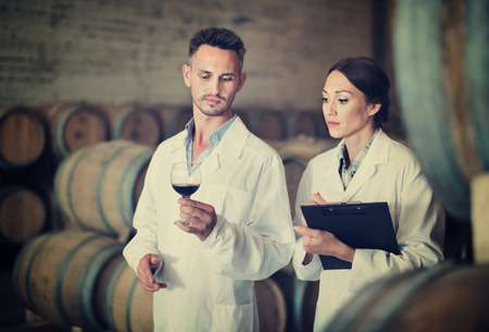 diligente: Portrait of young diligent positive  man and woman wearing coats holding glass of wine in winery cellar