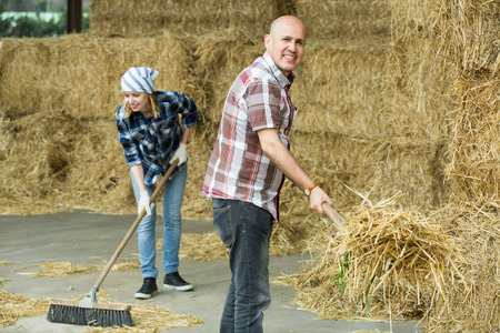 Young and mature fermers preparing hay for feeding livestock