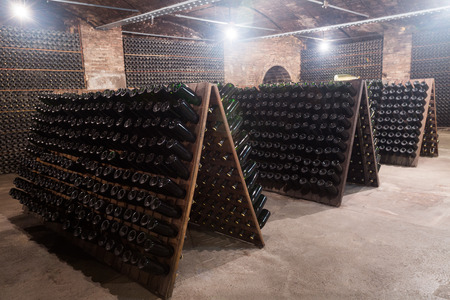 Sparkling wine glass  bottles fermenting  in winery cellar Editorial