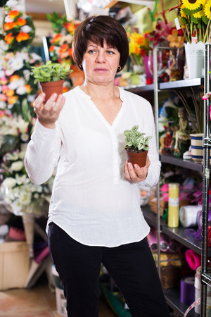 Woman customer looking for best begonia to buy in flower shop