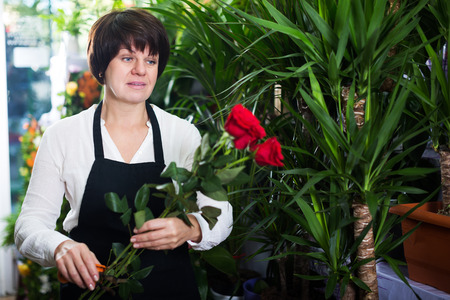 Shop assistant showing best roses in flower shop