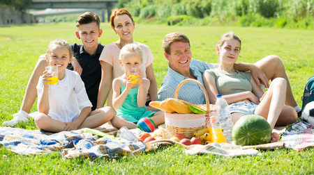 large: modern large family of six having picnic outdoors on green lawn in park