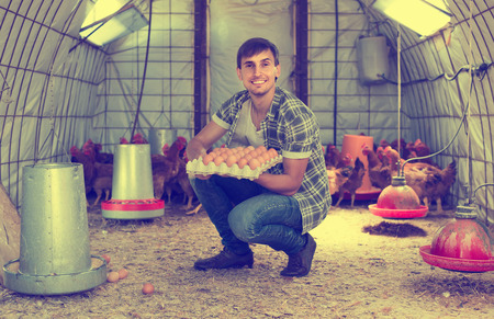 checking ingredients: Young cheerful spanish man picking fresh eggs in chicken house