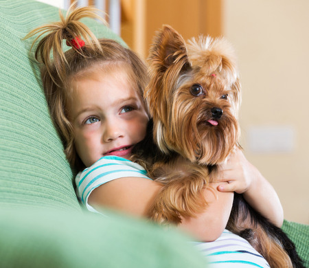 Beauty female child playing with charming Yorkie on sofa
