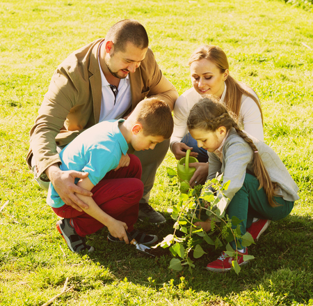 plantando un arbol: Smiling  European family of four planting a tree outdoors in a sunny weather