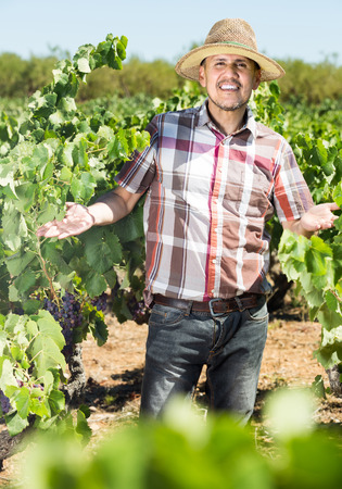 smiling russian mature man worker standing among grapes trees on sunny day