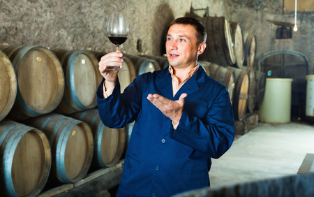 laboratorian: Glad positive friendly professional taster posing with glass of wine in winery cellar