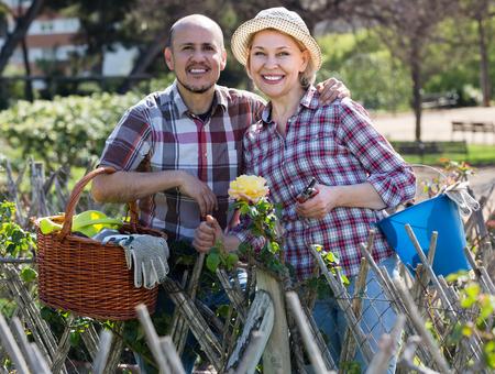 Joyful smiling elderly couple engaged in gardening in the backyard garden