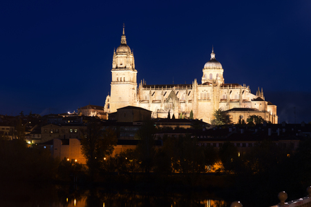 Salamanca Cathedral   in  night. Castile and Leon, Spain Stock Photo