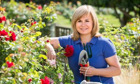 horticultural: smiling blond mature woman holding horticultural instruments in garden on summer day