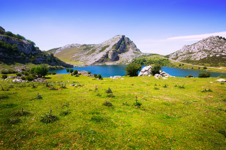 landscape with lake and pasture. Lake Enol,  Asturias, Spain Stock Photo