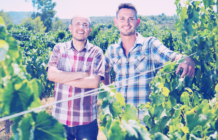 Two cheerful smiling gardeners standing together in grapes tree yard in sunlight Stock Photo
