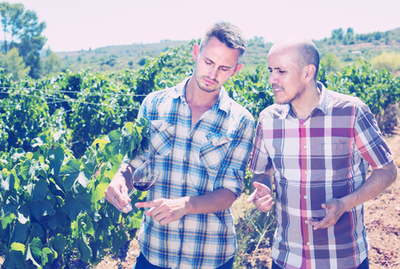 grower: Two happy gardeners standing together in grapes tree yard and looking at wine sample in glass