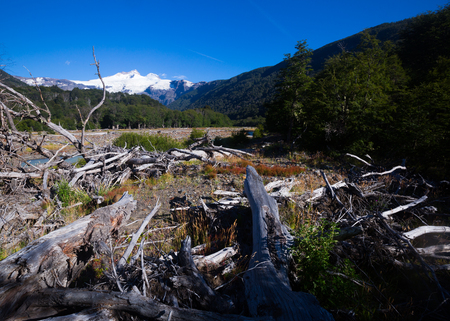 mount tronador: View from valley of river Cauquenes to mountain Tronador and glacier on summer day. Patagonia, Argentina Stock Photo