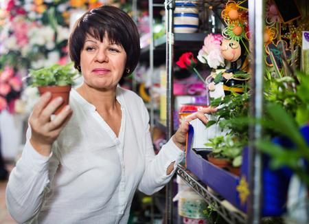 Satisfied pleasant smiling female customer choosing best begonia to buy in flower shop