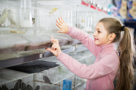 Smiling girl customer examining various bird species in pet shop