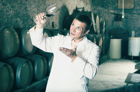 laboratorian: Positive taster posing with glass of wine in winery cellar