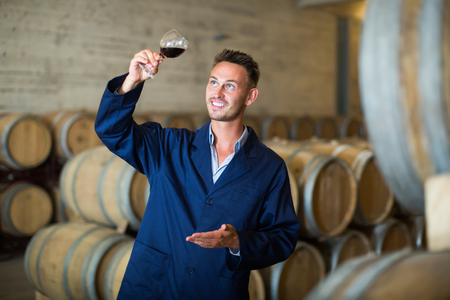 Young cheerful winery worker wearing coat holding glass of wine in large cellar Stock Photo