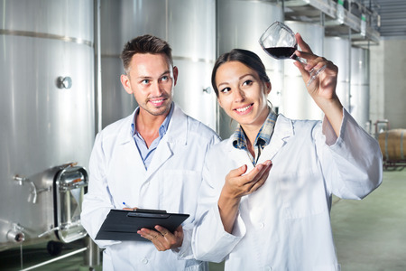 Young man and woman employees looking at wine sample in a glass and taking notes on winery manufactory. Focus on woman Stock Photo
