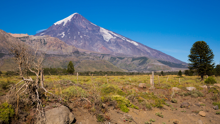 View from foothill valley to Lanin Volcano near border with Chile. Patagonia, Argentina, Chile, Andes