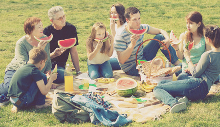 granddad: Positive people of different ages sitting and talking on picnic together