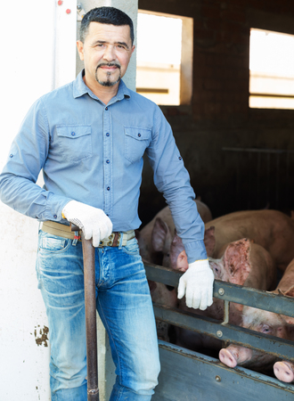 Mature man farmer standing next to enclosure fence in pigsty