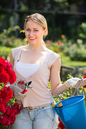 hilarious young woman working with bush roses with horticultural tools in garden on sunny day