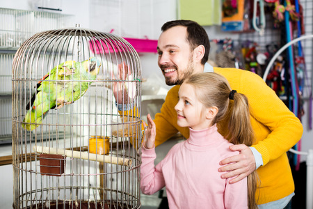 Happy father and daughter admiring large green parrot in pet shop