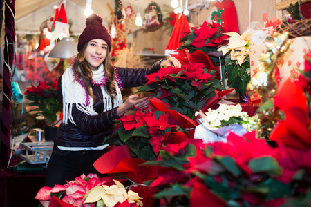festal: Portrait of attractive female teenage customer buying poinsettia decorations for Christmas outdoor