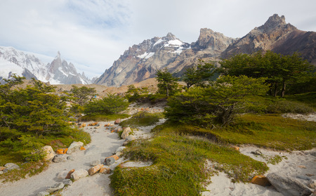 roy: Spectacular view on Fitz Roy Mount of the Southern Patagonian Ice Field in Argentina