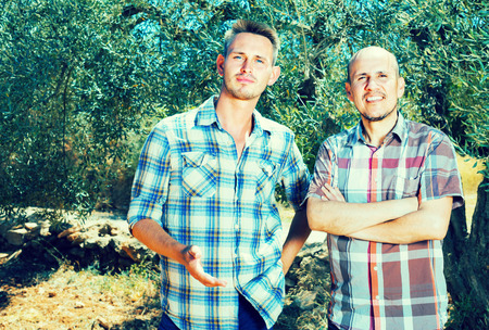 look latino: portrait of two cheerful male garden workers in olive tree garden on sunny day Stock Photo