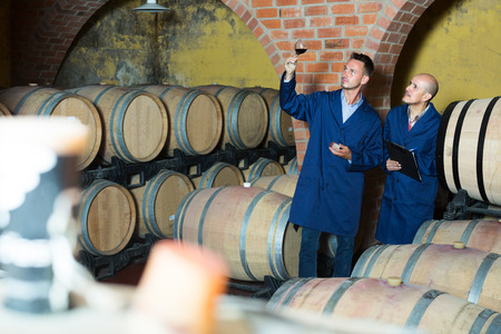 Adult serious winery workers taking notes while discussing wine sample in fermentation section Stock Photo