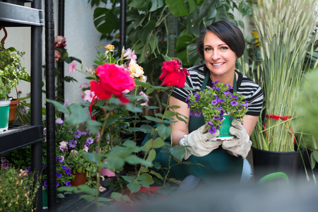 clothing store: Friendly smiling female florist in apron and gloves holding a pot with a flower plant in the floral shop Stock Photo