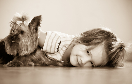 Positive female child embraces and playing with charming Yorkie at home Stock Photo