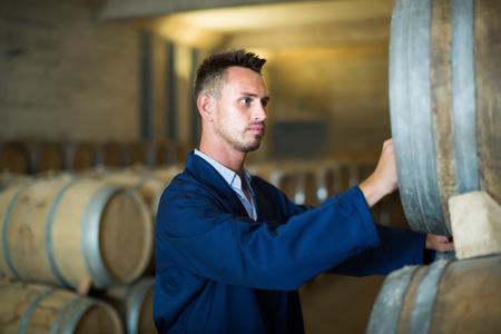Young man wearing uniform standing and labeling woods in winery cellar Stock Photo