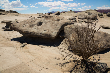 Landscape and stone formations in Ischigualasto Provincial Park, foothills of Andes. Argentina, Patagonia