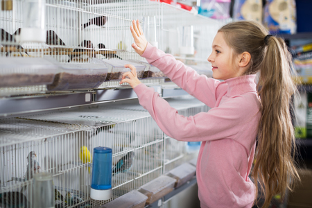 Little girl visitor with delight the sees parrots in a pet shop