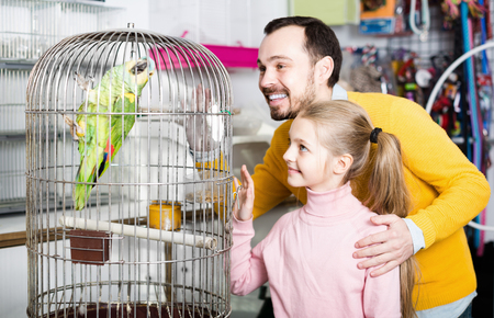 Positive father and daughter looking at big green parrot in pet shop