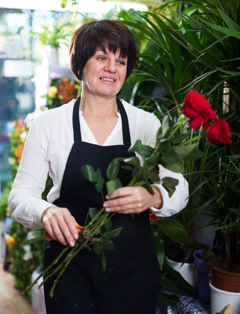 Woman seller demonstrating red roses in flower shop Stock Photo