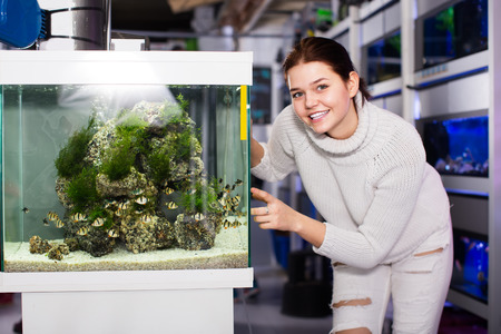 barbus: The girl points to an aquarium with barbus and seaweed in an aquarium store