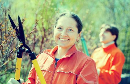 Female gardener cuts branches in the garden in spring Stock Photo