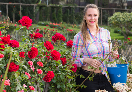 happy young russian woman holding a basket and standing in the park of roses