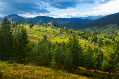 Image of Karpaty mountains on Bucovina in Romania. Фото со стока