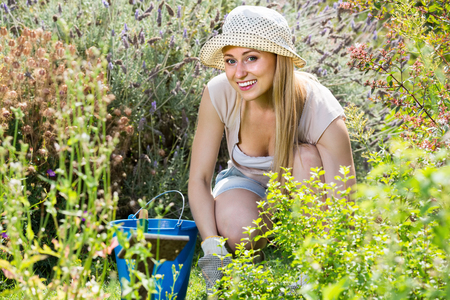 gay young woman working in garden among green plants and flowers on sunny day