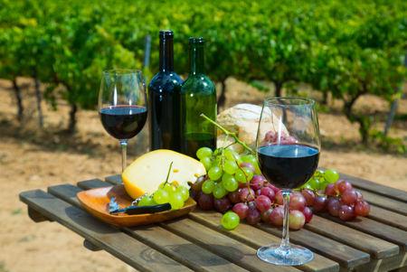 Red wine bottles and glasses on wooden table with cheese, bread and grapes overlooking vineyard