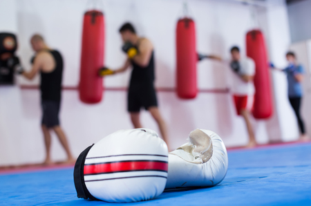 Portrait of gloves and people beating boxing bag on background
