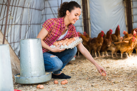 Young cheerful woman picking fresh eggs in chicken house